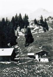 085-Foto  03955 - Gitschenen Berg