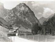010-Foto  04361 - Guetig Richtung Horn  Telefonstangen mit 24 Drähten