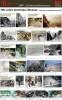11791 - 2001 Hundert Jahre Isenthalerstrasse