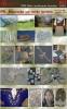 11797 - 1995 Bildn./textilhandw. Gestalten - Fotos aus der Ausstellung von 1995