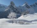 11995 - Fotowettbewerb Rang 28 - Gitschener Winter - von Käthy Furrer-Gisler, Isenthal