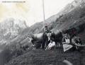 Foto 555 - Auf der Alp Wilderbutzen