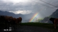 0212Fotowettbewerb - Wolkenbruch - von Evelyne Jauch, Isenthal