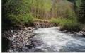 Foto 00233 - Bachverbauung unterhalb Schwarzwald