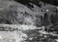 Foto 00239 - Ufersicherung unterhalb Schwarzwald
