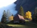 0086Fotowettbewerb - Herbststimmung auf der Alp Sattel - von Sofie Herger, Seedorf