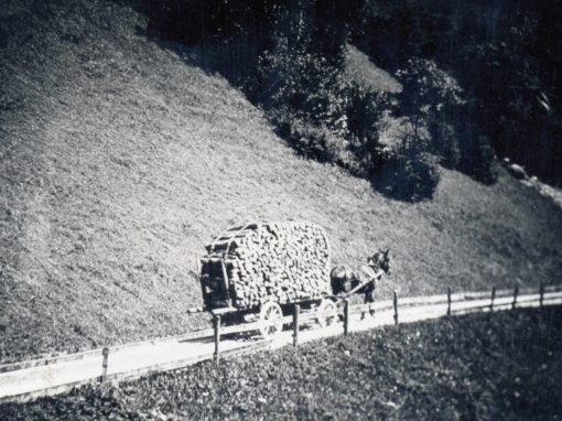 Fotoalbum Margrit Aschwanden – Sigersten Griti